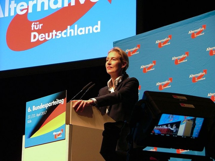 Alice Weidel leader of the AfD Image Olaf Kosinsky